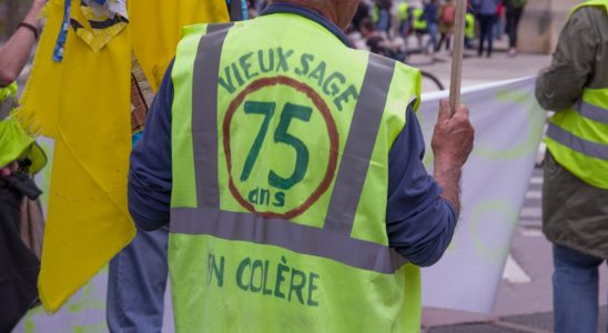 traductrice poutine gilets jaunes france