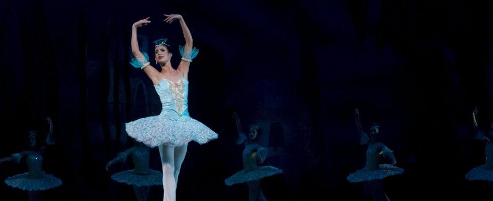 ballerine ballet russe lac cygnes