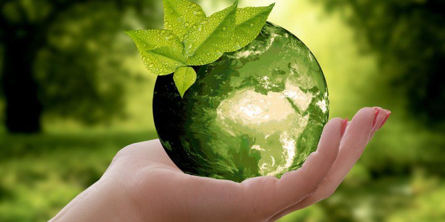 écologie russie